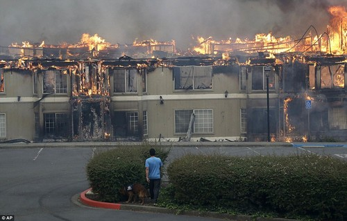 Rudy Habibe, from Puerto Rico, and his service dog Maximus walk toward a burning building at the Hilton Sonoma Wine Country hotel where he was a guest