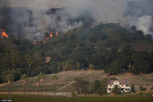 Flames burn on a hillside near Napa Road during the Nuns Fire in Sonoma, California on Monday, October 9. Fourteen large fires were burning, spread over a 200-mile region north of San Francisco from Napa in the south to Redding in the north