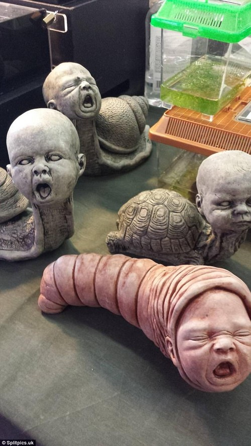 A centrepiece with a twist? These ceramic sculptures appear to be inspired by wildlife with the faces of crying babies - and they're enough to send dinner party guests running for the hills