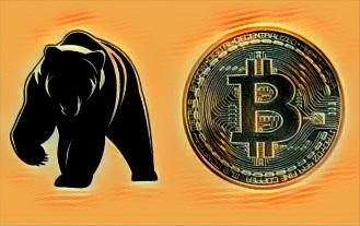 Bitcoin Cash Soars