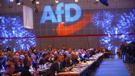 German far-right AfD surpasses Social Democrats to become 2nd strongest party – poll