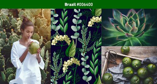 2019 Color Trends – Brazil