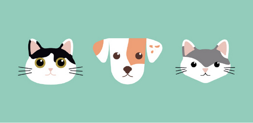 Create a Flat Vector Illustration of Your Pets in Illustrator — Fun Vector Illustration