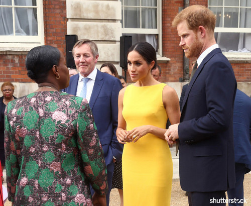 Prince Harry and Meghan Markle: The Year in Review — Yellow Dress