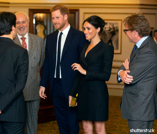 Prince Harry and Meghan Markle: The Year in Review — Charity Performance