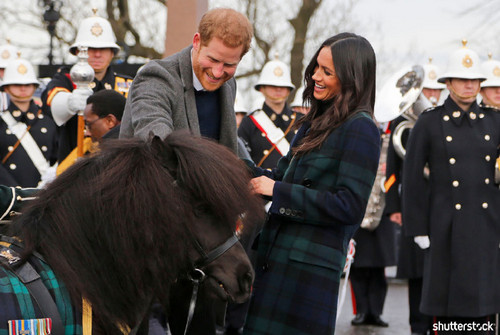 Prince Harry and Meghan Markle: The Year in Review — Harry Pets a Pony