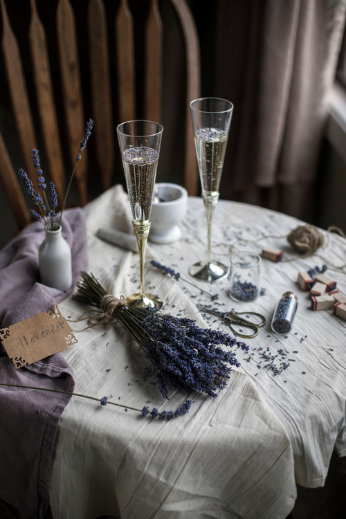 January Fresh: New Content We Love — Champagne and Lavender