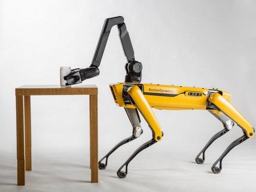 Robot Dog (2)