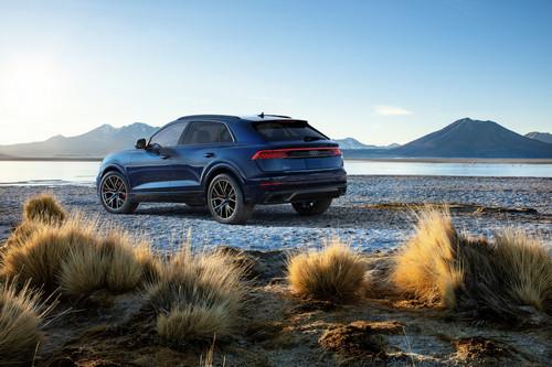 Large-2019-Audi-Q8-4595