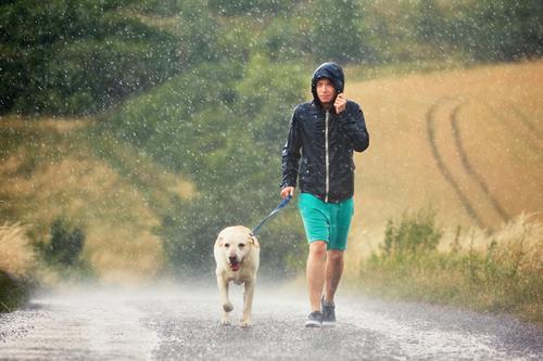 7 Photographers on Taking Beautiful Photos on Rainy Days — Monitor Weather Apps