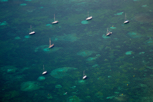 February Fresh - Sailboats Drone