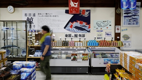Japan resumes commercial whaling, but days could be numbered
