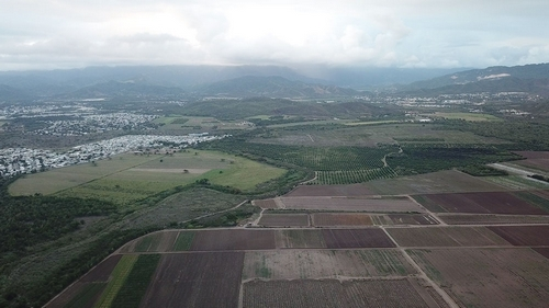 Puerto Rico - Monsanto